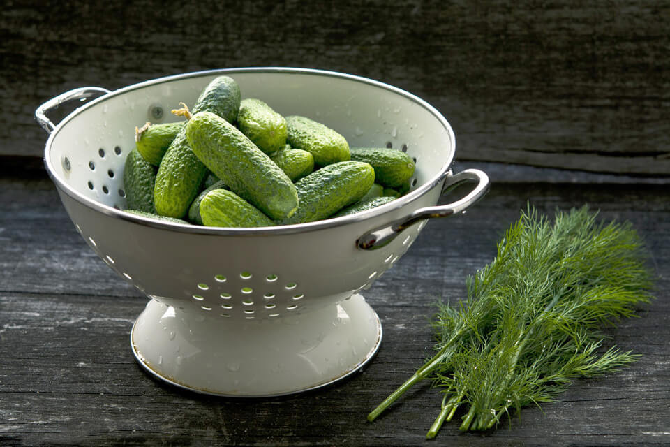 Vegetales en conserva